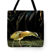 Squacco Heron On The Look Out For Fish Tote Bag
