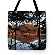 Squam Lake 1 Tote Bag