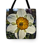 Square Daffydowndilly Tote Bag