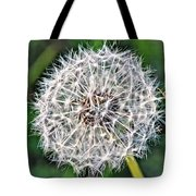 Square Dandelion 2 Tote Bag