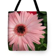 Square Framed Pink Daisy Tote Bag