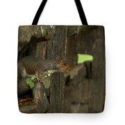 Squatting Squirrel Tote Bag