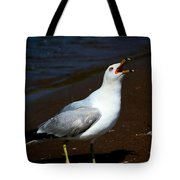 Squawk Tote Bag by Amanda Struz