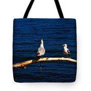Squawk Box Tote Bag by Amanda Struz