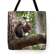 Squirrel 7 Tote Bag