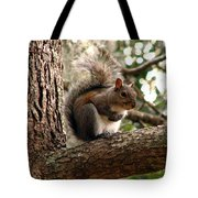 Squirrel 9 Tote Bag