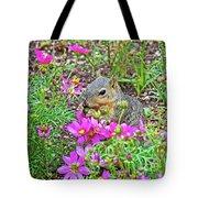 Squirrel Among Coreopsis In Huntington Gardens In San Marino-california   Tote Bag