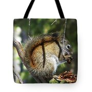 Squirrel Enjoys A Great Meal Tote Bag