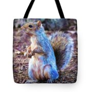 Squirrel - Id 16218-130716-8114 Tote Bag