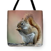 Squirrel In Fall Tote Bag