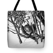 Squirrel In Low Branches Tote Bag