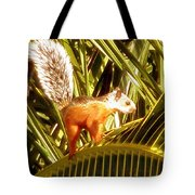 Squirrel In Palm Tree Tote Bag