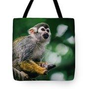 Squirrel Monkey Looking Up Tote Bag