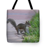 Squirrel Nuts Tote Bag