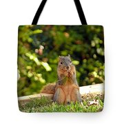Squirrel On A Log Tote Bag