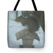 Squirrel On Bird Feeder Tote Bag