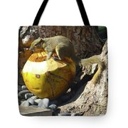 Squirrel On The Coconut Tote Bag