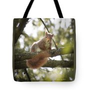 Squirrel On The Spot Tote Bag