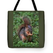 Squirrel Portrait # 3 Tote Bag