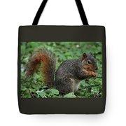 Squirrel Portrait # 6 Tote Bag