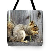 Squirrel - Snack Time Tote Bag