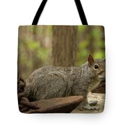 Squirrel With Anchor Tote Bag
