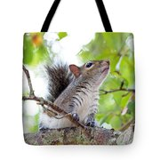 Squirrel With Personality Tote Bag