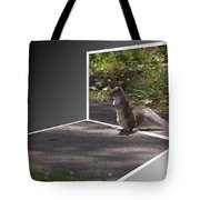 Squirrel World Tote Bag
