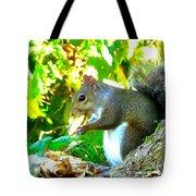 Squirrel1 Tote Bag