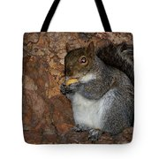 Squirrell Tote Bag