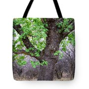 Squirrels Live Here Tote Bag