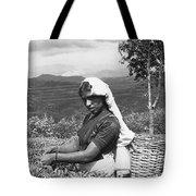 Sri Lanka Tea Plantation Tote Bag