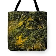 Seeing The Beauty In The Trees Tote Bag