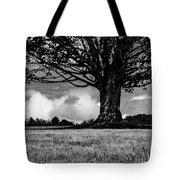St. Benedict Abbey Single Tree In Summer Tote Bag