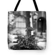 St. James Court 5 Bw Tote Bag