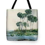 St John's River Florida Tote Bag