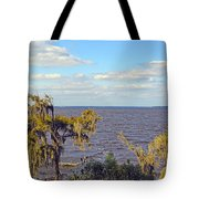 St. Johns River Meets The Ocean Tote Bag