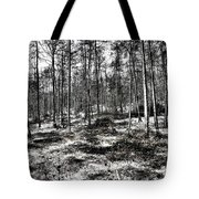 St Lawrence's Wood, Hartshill Hayes Tote Bag