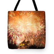 St. Louis Fireworks Tote Bag