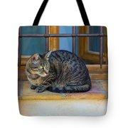 St Paul Cat Tote Bag