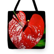 A Point To Your Heart Tote Bag