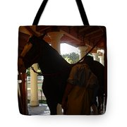 Stable Groom - 2 Tote Bag