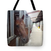 Stable-izer Tote Bag