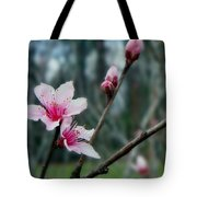 Stages Of Spring Tote Bag
