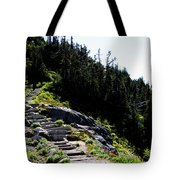 Stairs Along Skyline Trail Tote Bag