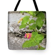 Stairs Of Sapelo Island Tote Bag