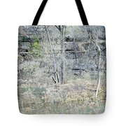 Stairs On The Wall Tote Bag