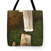 Stalacites And Stalagmites In A Cave Tote Bag