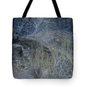Stalked - Mountain Lion Tote Bag