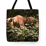 Stalking Big Cat Tote Bag